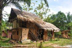 La escuela de construcción natural Dindang se encuentra en un pequeño pueblo llamado Paksong, en el distrito Phato del sur de Tailandia. La mayoría de la gente del pueblo trabaja en una de las numerosas pequeñas plantaciones de fruta, palmeras y árboles del caucho. Más fotos y un vídeo en www.naturalhomes.org/es/homes/dindang.htm
