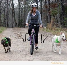 Works best for trained dogs.