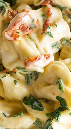 Tortellini in Parmesan Cream Sauce with Spinach and Sun-Dried Tomatoes