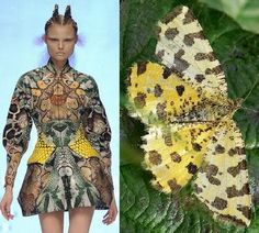 THE INSPIRATION BEHIND ALEXANDER MCQUEEN SPRING 2010 are Moths