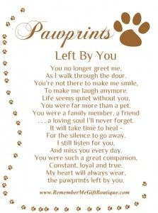Loss Of A Pet Quote Beauteous Loss Of A Pet Quotes  Google Search  Good Thoughts  Pinterest