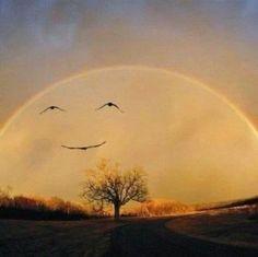 Birds in flight or smile in the sky?  I believe a smile in the sky...