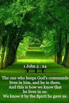 1 John 3:24