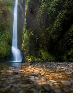 Apparently this waterfall is in Oregon. I want to go here!