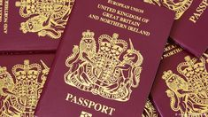 Do I need to renew my passport after Brexit? Latest advice and how to check Passport Form, Passport Online, Stolen Passport, Best Cryptocurrency Exchange, Buy Cryptocurrency, Quick Money, Ways To Earn Money, Passport Services, Passport Documents