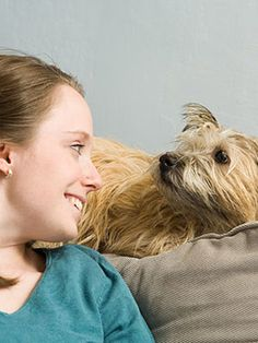 Check out this great dog training site - http://dogtraining-p9205dsc.myowntrustworthyreviews.com