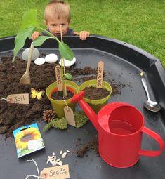 planting seeds in the tuff spot tray by Lottie Makes Eyfs Activities, Nursery Activities, Indoor Activities For Kids, Preschool Activities, Children Activities, Summer Activities, Family Activities, Eyfs Outdoor Area, Outdoor Games