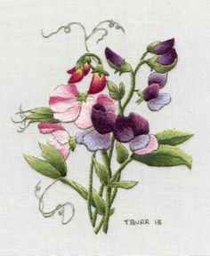 Redoute's Sweet Peas by Trish Burr