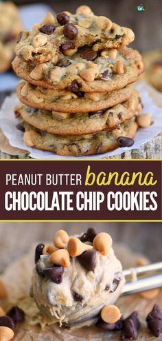 Looking for the best peanut butter chocolate chip cookies recipe? You just found it! Peanut Butter Banana Chocolate Chip Cookies recipe is easy, healthy, and chewy! Everything about this homemade recipe is absolutely amazing! Save this pin! Peanut Butter Banana Cookies, Banana Chocolate Chip Cookies, Banana Bread Cookies, Healthy Banana Cookies, Ripe Banana Recipes Healthy, Cookies With Bananas, Cookies With Butterscotch Chips, Recipes For Overripe Bananas, Easy Banana Desserts