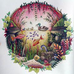 Coloriage Colouring Adultcoloringbook Enchantedforest Johannabasfordenchantedforest Colorirlivros Secretforestocean Majesticcoloring