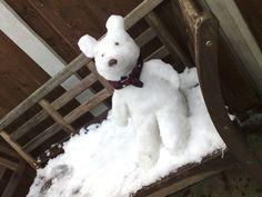 Snow Bear #2