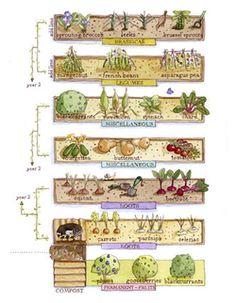 7 Gorgeous ideas: Pretty Vegetable Garden How To Build vegetable garden layout other.Vegetable Garden Beginner Tips. Vegetable Garden Planning, Veg Garden, Vegetable Garden Design, Edible Garden, Garden Art, Allotment Plan, Allotment Gardening, Organic Gardening, Urban Gardening
