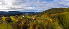 That Autumn Feeling - Trees is autumn colors on a beautiful day. Autumn Feeling, Beautiful Day, Vineyard, Landscapes, Trees, Mountains, Feelings, Colors, Nature