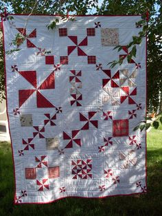 Not big on white though I suspect you might find that difficult to believe number of white background quilts I have.....love the use of scale in this quilt