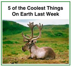 5 Coolest Things On Earth This Week