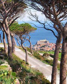 Isola di Capraia, Arcipelago toscano, Italy