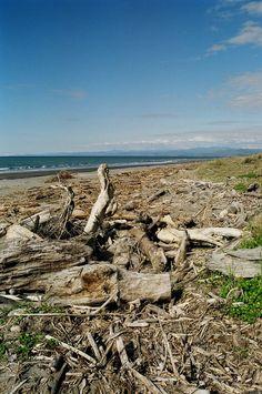 Opotiki beach, Bay of Plenty.  New Zealand