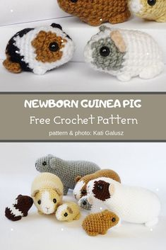 Newborn Guinea Pig Crochet Pattern ❤️ Mycrochetpattern