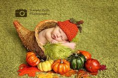 Here are five great poses for your baby showing what you're most grateful for this Thanksgiving. www.milkandbaby.com