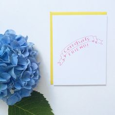 Congrats Friend Card  Congratulations  New Baby  by Tin Oiseau
