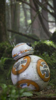Movie Star Wars Episode VII: The Force Awakens Star Wars Rey Daisy Ridley BB-8.