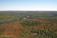 Over Rock Creek in Algonquin Park on September 25, 2013. The Algonquin Visitor Centre is the white object, back left.  Fall aerial images of Algonquin Park's fall colour. www.algonquinpark.on.ca