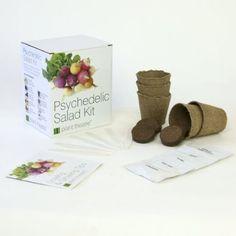 Kit Psychedelischer Salat von Plant Theatre - 5 fantastische Salatsorten zum Züchten - Ein tolles Geschenk: Amazon.de: Garten