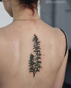 Rosemary tattoo on the upper back.