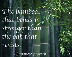 The bamboo that bends is stronger than the oak that resists. ~ Japanese Proverb