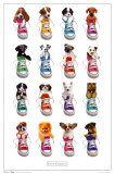 Posters, Art Prints, Framed Art, and Wall Art Collection Dog Poster, Sale Poster, Modern Photography, Artistic Photography, Setter Puppies, Framed Art, Wall Art, Wheelbarrow, Beautiful Cats