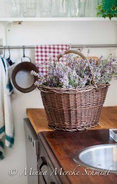 e lavanda En korgfull av väldoft | blomsterverkstad