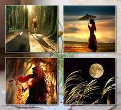 . Collages, Forest Flowers, Beautiful Collage, Fractals, Mona Lisa, Sunrise, Neon, Artwork, Painting