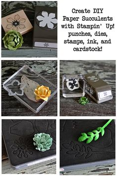 July 20 DIY Paper Succulents: Stampin' Up! cardstock, ink, stamps, punches, and dies make the most adorable DIY paper succulents! - Allison Okamitsu