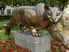 University of Houston: Shasta statue