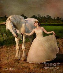 Perfect Dancers  by Dorota Kudyba