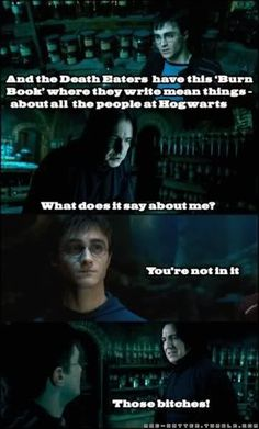 Harry Potter + Mean Girls = Also Awesome...actually, I think if you apply Mean Girls to anything, I'll find it to be awesome.