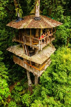 My guide to Costa Rica most spectacular treehouses! From luxury tree houses to rainforest hideaways, spend the night in these stunning, elevated eco-lodges! Voyage Costa Rica, Costa Rica Travel, Treehouse Cabins, Treehouses, Cool Tree Houses, Tree House Designs, Lodges, The Good Place, Gazebo