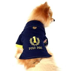 56 melhores imagens de Roupas para Cachorros 81b60d99388