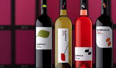 Вино Vicente Gandia El Miracle  #wine #spain #red #white