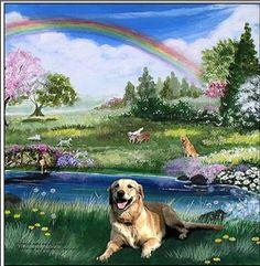 Las mascotas y el puente del Arco Iris, ¡no te lo pierdas!