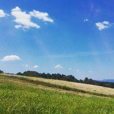 #Campagna di #SanVivaldo, #Toscana, #Italia.  #Countryside of #SanVivaldo, #Tuscany #Italy.  #countrylife #igersfirenze #igerstoscana #Montaione #traditions #tradizioni #natura #nature #naturaleza #blue #azzurro #bluesky
