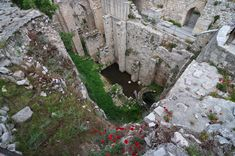 Pictures of the Pool of Bethesda | in the 1st century bc natural caves to the east