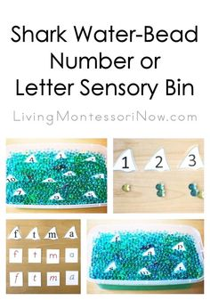 This fun DIY preschool activity uses free printables that are laminated for use in a simple shark water-bead number or letter sensory bin! Sensory Tubs, Sensory Rooms, Sensory Bottles, Shark Activities, Sensory Activities, Discovery Bottles, Water Beads, Preschool Themes, Ocean Themes