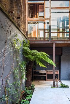 Garden detail | extension of a terraced house in London by GBA Studio & Palladio Steel Systems