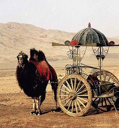 La route de la soie, qu'est ce que c'est,l l'histoire de cette route des grands voyageurs et grands explorateurs qui ont voyagé de l'orient à l'occident.