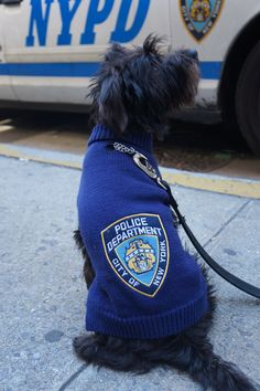 Royal Animals NYPD Navy Blue Turtleneck Sweater w/Official Patch Navy Blue Turtleneck, Royal Animals, Animal Sweater, Pet Clothes, Turtle Neck, Puppies, Pets, Sweaters, Fashion