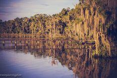 "mistymorningphoto: ""River Reflection © mistymorningphoto Tumblr | Flickr """