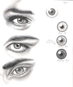 Eye Study by ShamiART on deviantART