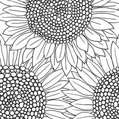 Sunflower //