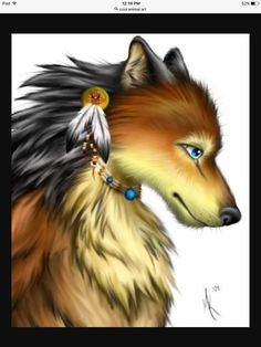 Indian wolf is awesome